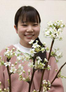 南部・「世羅なし」の花が市場で開花