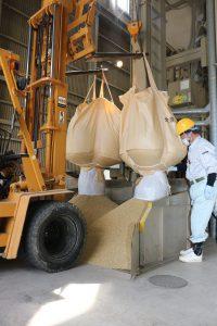 庄原・飼料用米収穫開始