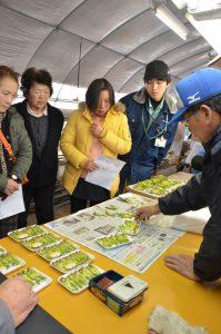 広島市・湯来町農事研究会タラの芽目合わせ講習会
