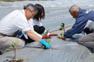 広島北部・体験農園「実来生」開園